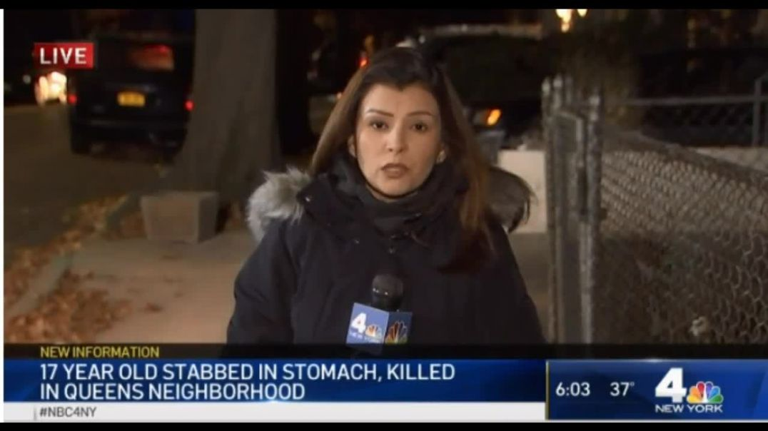 17 Year Old Teen Girl Stabbed To Death In Queens