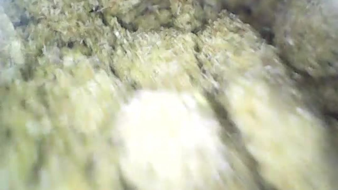 Endoscope in Kief (About to make some Hash)